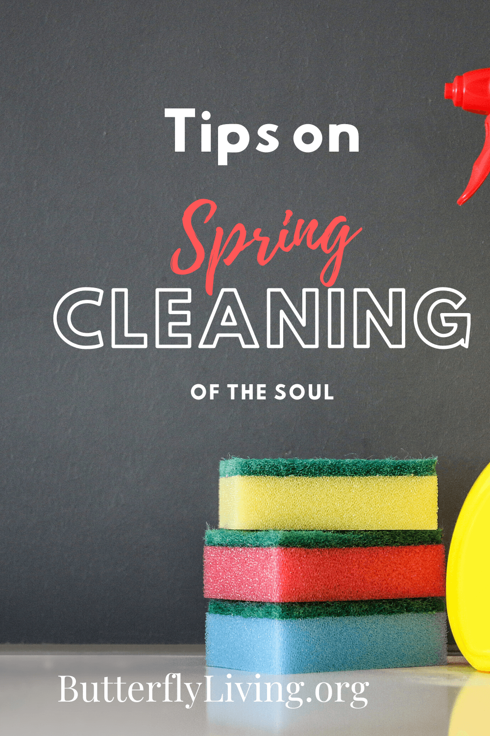 sponges with words-spring cleaning