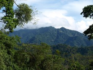 Honduran Mountain-what does the Bible say about generosity