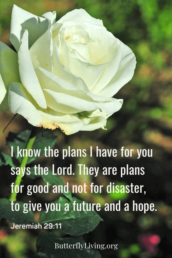 Flower-finding your purpose in God