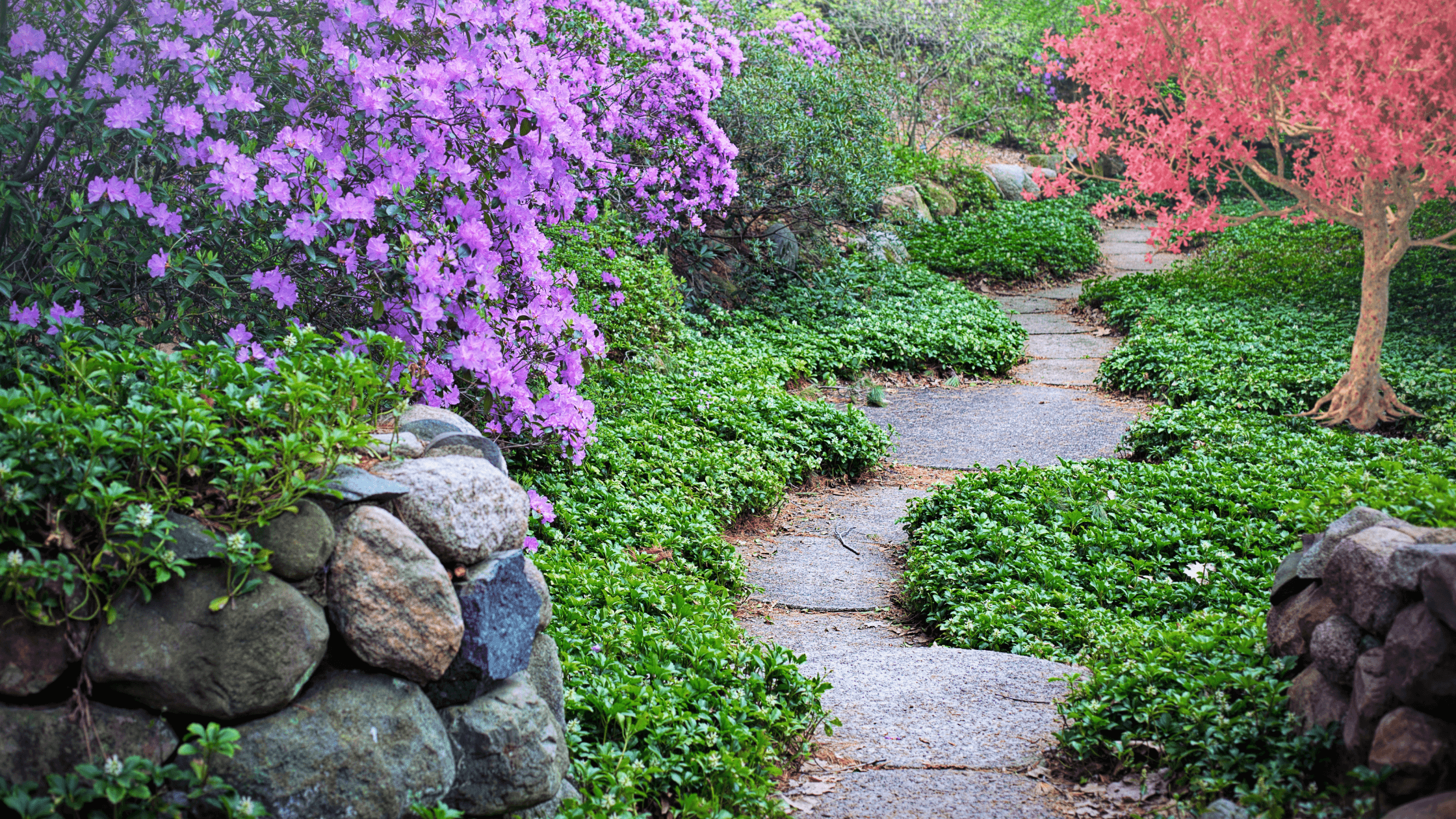 Garden path-finding your purpose in God