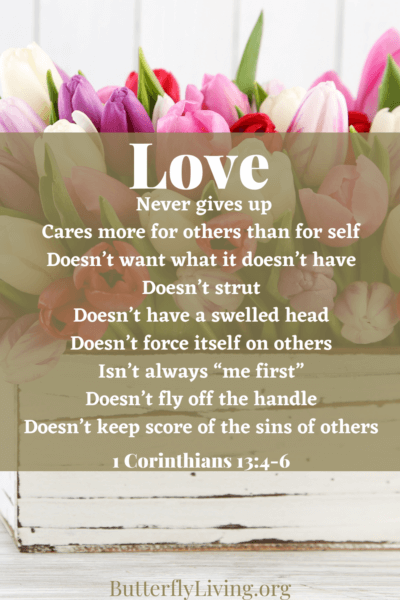 scripture with flowers-how to build healthy relationships