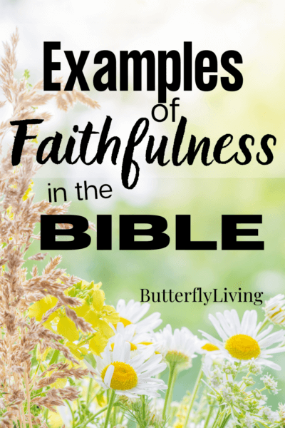 flowers-what does the bible say about faithfulness