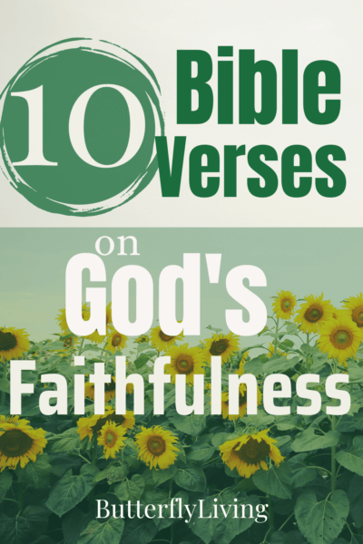 sunflowers-what does the bible say about faithfulness