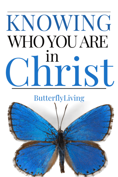butterfly-who am I in Christ